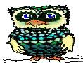 bird big2